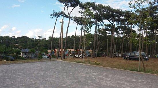 Camping Le Saint Martin: 20160712_200019_large.jpg