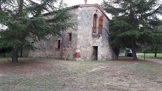 San Giovanni d'Asso, Italia: 20160723_083422_large.jpg