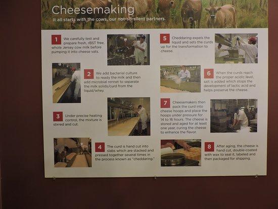 Brattleboro, VT: 8 Steps to Making Cheese