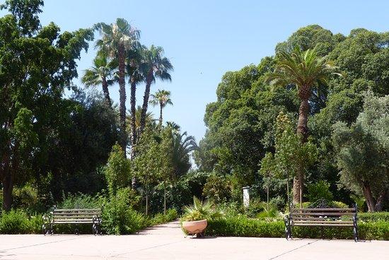 Jardin el Harti Φωτογραφία