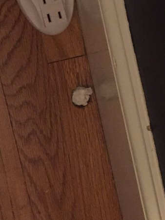Gorham, ME: A hole in the floor that appears to have some paper shoved into it to fill