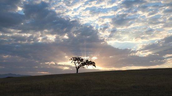 Santa Ynez, Califórnia: Sunrise from the street adjacent to the Inn