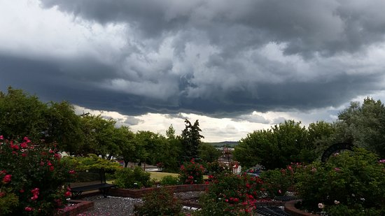 Pincher Creek, Canadá: Storm passing through the rose garden