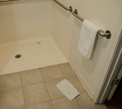 Motel 6 Dillon: wash rag was on the floor..dirty stall