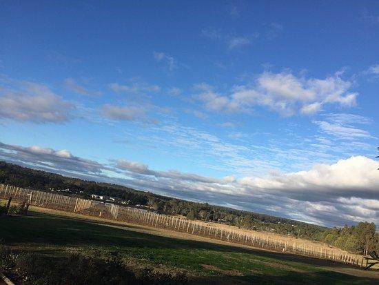 Singleton, Australia: photo5.jpg