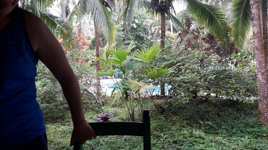 Hotel La Diosa: 20160725_082522_large.jpg