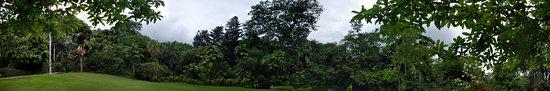 Victoria, Seszele: panorama