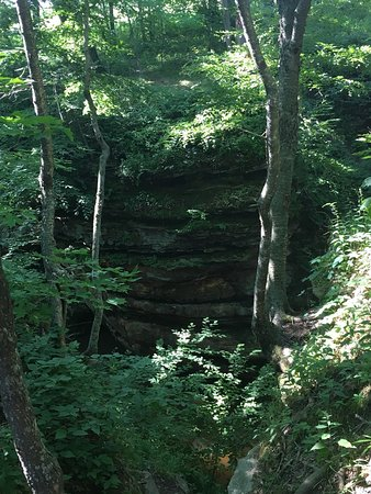 Pewit's Nest Gorge: photo7.jpg