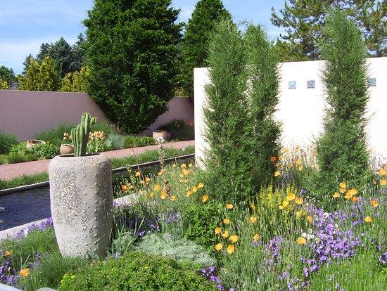So Much Texture At Dbg Picture Of Denver Botanic Gardens Denver Tripadvisor