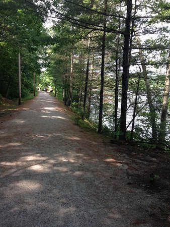 Wolfeboro, NH: This is a beautiful trail for walking, running and biking. Great for taking pictures and I saw a