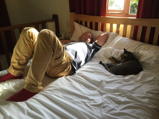 Bovey Tracey, UK: Resting