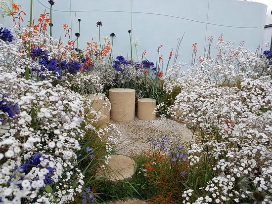 """Кнатсфорд, UK: """"High Tide 2030"""" Garden, Tatton Park Flower Show 2016"""