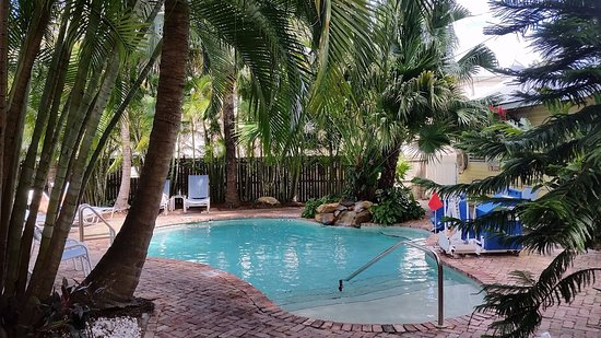 Angelina Guest House: The tranquil patio and pool area