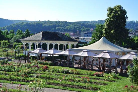 Saverne, Frankrike: Vue d'ensemble 2