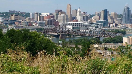 Covington, KY: I had zoomed in on the city from the park. Love this picture.