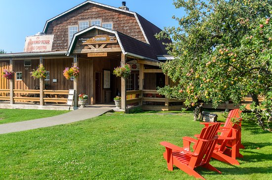 Cobble Hill, Canadá: Do a self-guided tour around the grounds and our full cider apple orchard. Lots to see...