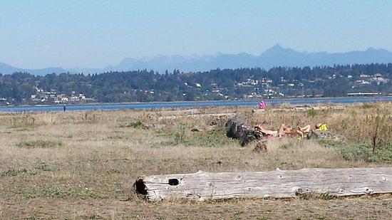 Сюррей, Канада: Sunbathers find a reclusive spot to enjoy Blackie's Spit. Panorama Ridge to the North.