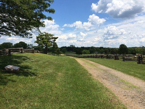 Looking down Tibbs road toward Appomattox Court House