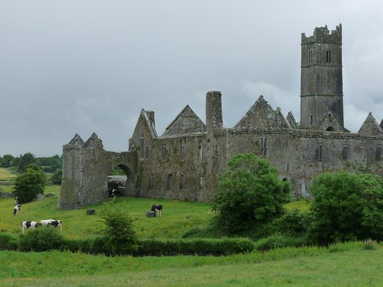 Tulla, Irlande : Quin Abbey is nearby and worth a visit