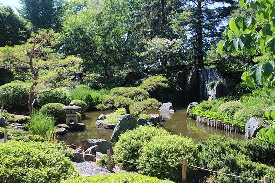 Chanhassen, MN: Japanese Garden 2015