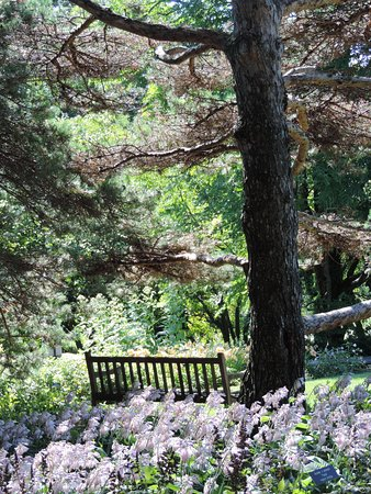 Chanhassen, MN: July 2015 Inviting bench
