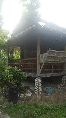 Mayas Native Garden: 20160720_155911_large.jpg