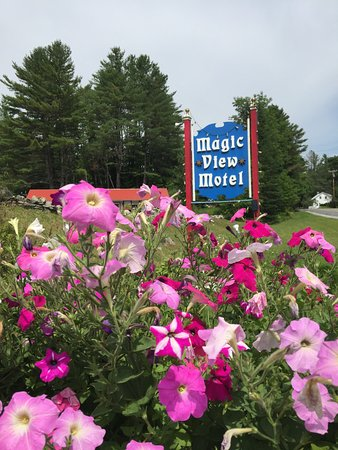 Magic View Motel: hotel