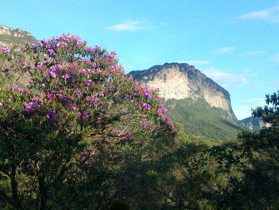Palmeiras, BA: Visão da natureza