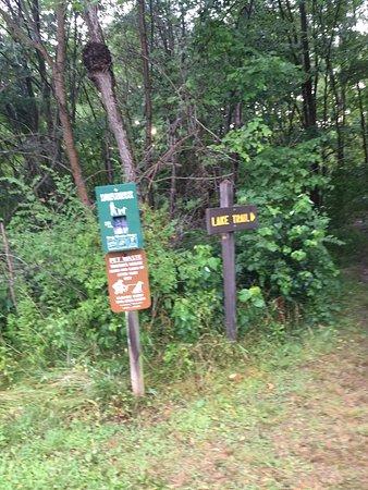 ดรัมส์, เพนซิลเวเนีย: Nescopeck State Park