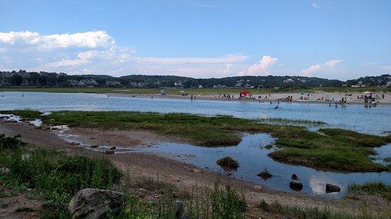 Good Harbor Beach Marsh Area