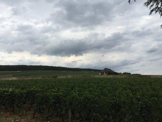Aloxe-Corton, Francia: photo0.jpg