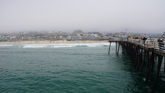 Pismo Pier : Looking back from end of pier.