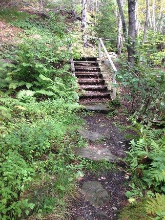 Miramichi, Canadá: Trails