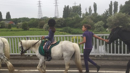 Sandwell Valley Riding Centre