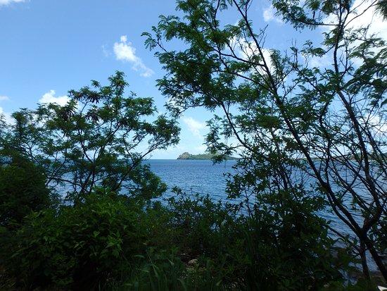Rodney Bay-billede