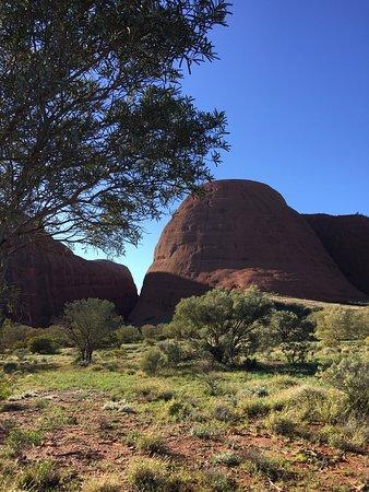 Yulara, Australia: photo2.jpg