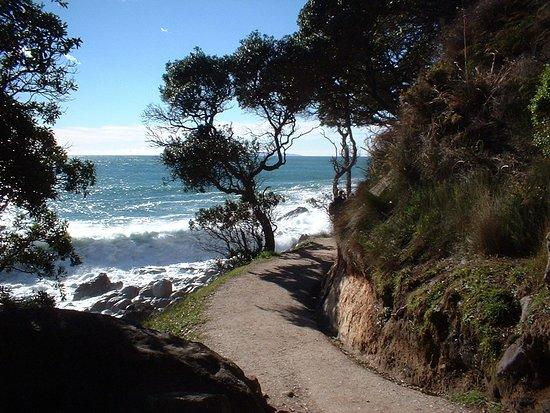 Моунг-Монгануи, Новая Зеландия: Photo taken on a day with a good surf coming in.