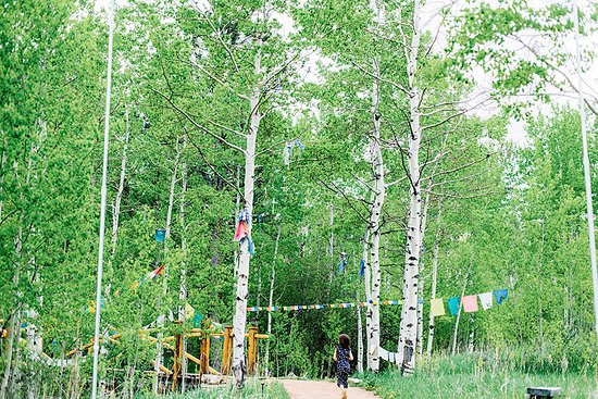Red Feather Lakes, CO : Walking to the Stupa there are prayer flags and the sound of rushing creek water below the bridg