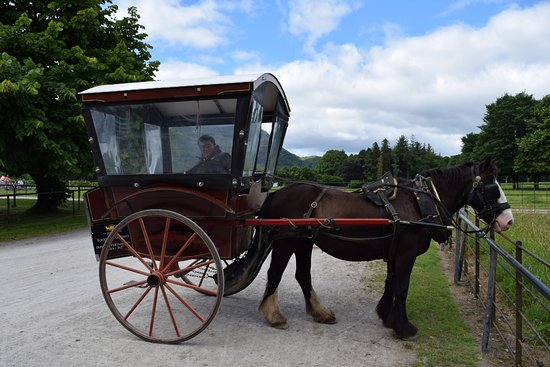 Muckross House, Gardens & Traditional Farms: Horse drawned buggy