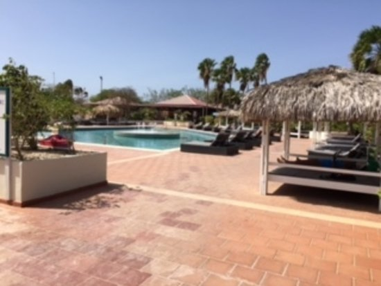 Plaza Resort Bonaire: Great pool for lounging