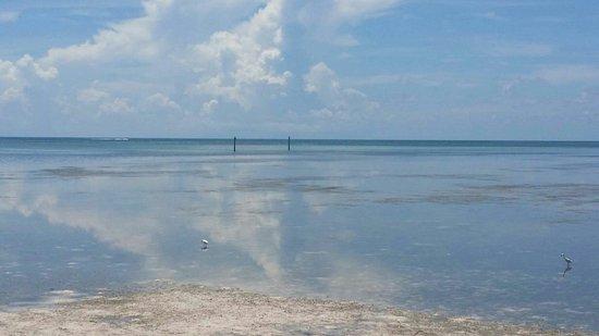 Anne's Beach: edited_20160629_115409_large.jpg