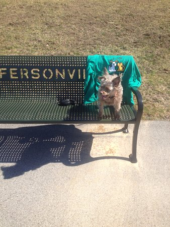 Jeffersonville, Ιντιάνα: Nice benches to set on