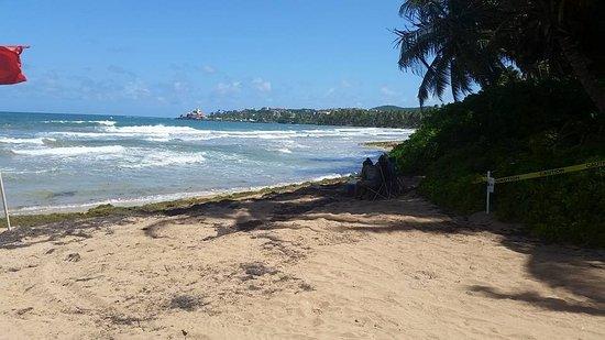 Wyndham Garden at Palmas del Mar: Beach red flag dangerous