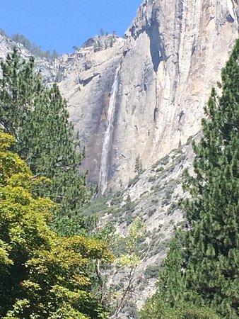 Yosemite Valley Floor Tour: Photo1