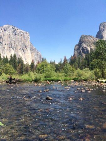 Yosemite Valley Floor Tour: Photo4