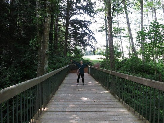 Bloedel Reserve: One of the many bridges on the trail