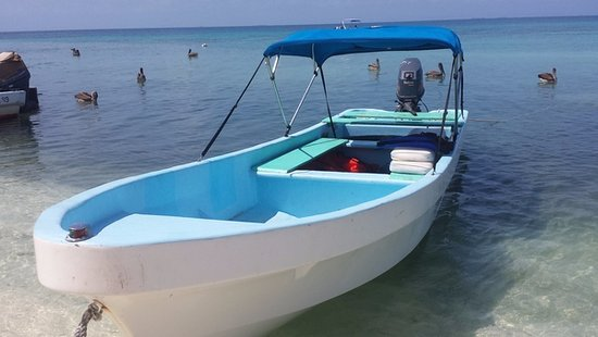 ‪بلاسينسيا, بليز: boat taxi to Laughing Bird Caye‬