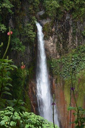 Bajos del Toro, كوستاريكا: the falls