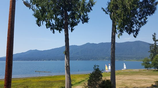 Quinault, WA: Another view from the hotel parking lot