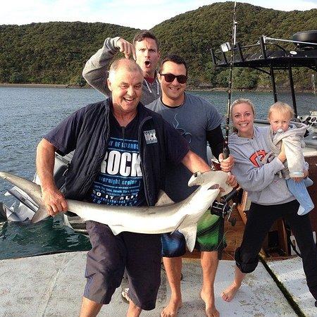 Paihia, Nieuw-Zeeland: My husband catching a hammerhead shark with Captain Rowan at sunrise!